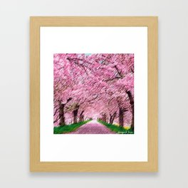 Cherry blossoms on an old New England back road landscape painting by Jéanpaul Ferro Framed Art Print