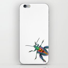 Frog-legged Beetle... Oh-so-shiny! iPhone Skin