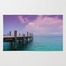 Floridian Paradise  Rug