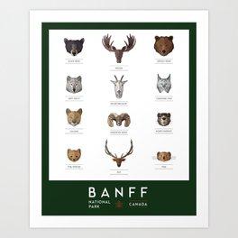 Banff National Park Animals Art Print