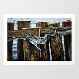 Tattered And Torn Art Print