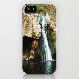 Paradise Falls iPhone Case