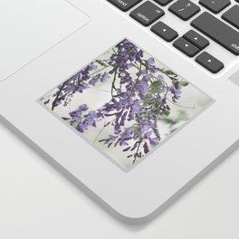 Wisteria Lavender Sticker