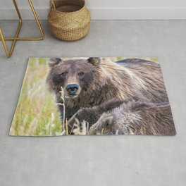 Super Adorable Grizzly Bear Mother With Her Two Cubs Grazing Meadow Close Up Ultra HD Rug