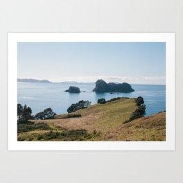Coromandel Peninsula Art Print