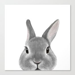 Netherland Dwarf rabbit Grey, illustration original painting print Canvas Print