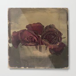 The veins of Roses Metal Print