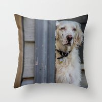onward Throw Pillows featuring Looking onward by Stu Naranch