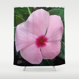 Simplicity in a Pink Flower Shower Curtain
