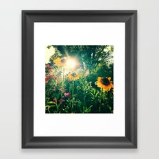 Rays of Light Framed Art Print