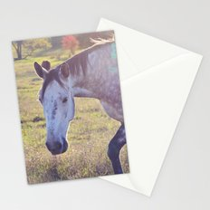 Star Horse Stationery Cards
