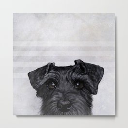 Black Schnauzer Dog illustration original painting print Metal Print