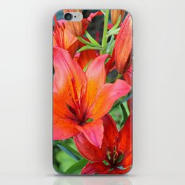Day Lilies iPhone Skin