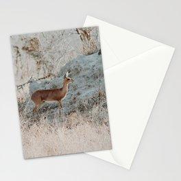 Steenbok Stationery Cards