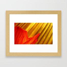 Sun Rays & Blossoms Framed Art Print