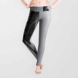 Qatar Airlines Airbus And Seagull Escort Leggings