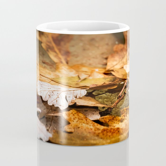 Fall is here Coffee Mug