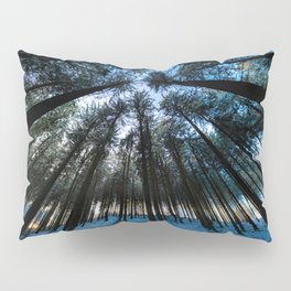 Oblivion Forest                   ( color ) Pillow Sham