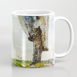 Stumpy Coffee Mug