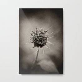 Beauty of Loneliness Metal Print