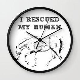 I Rescued My Human Wall Clock