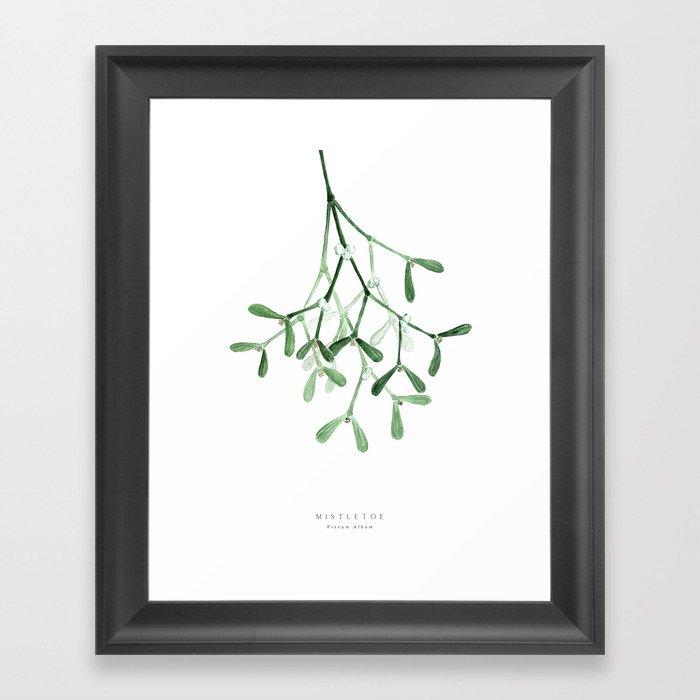 Watercolor mistletoe illustration Framed Art Print