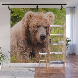 Brown Bear Kodiak Wall Mural
