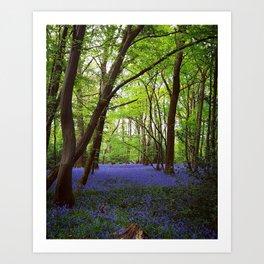 Lilac Spring Art Print