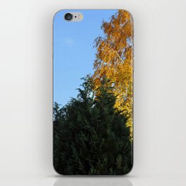 Nature tree yallow green iPhone Skin
