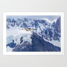 Austral Patagonian Bird Flying Art Print