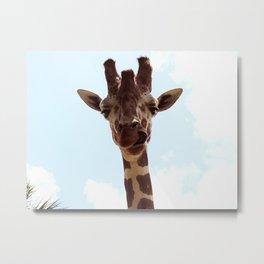 Silly Giraffe Metal Print