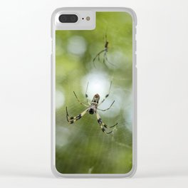 Orb Weaver Spider Clear iPhone Case
