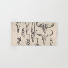 Antlers And Horns Hand & Bath Towel
