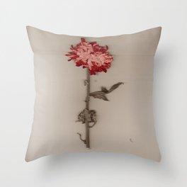 Red + Sepia Throw Pillow