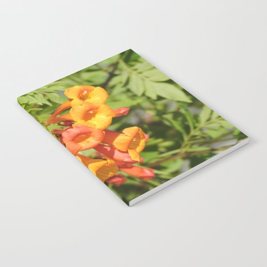 Natural Brass Blowing in the Breeze Notebook