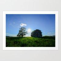 Surrounded Summer Sun Art Print