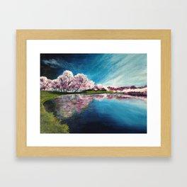 Cherry Blossom Reflections Framed Art Print