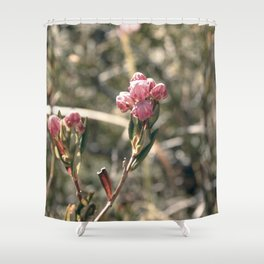 Blossom Burst Shower Curtain