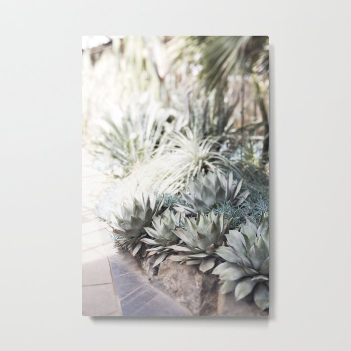 The Succulent Room at Longwood Metal Print