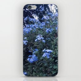 Pretty In Periwinkle iPhone Skin