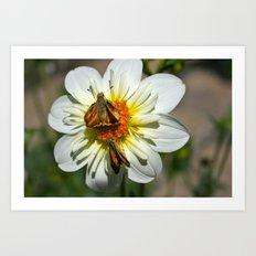 Winged Flower 2 Art Print