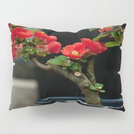 BEAUTIFUL CAMELIA BONSAI Pillow Sham