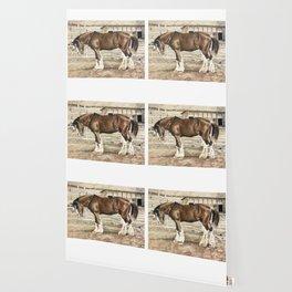 Draught Horse Wallpaper