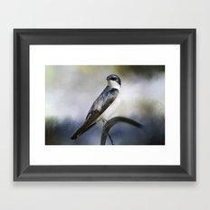 Tree Swallowtail Framed Art Print