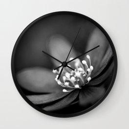 Blue spring flower Hepatica in bw II Wall Clock