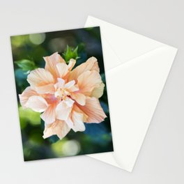 Jane Cowl Tropical Hibiscus Stationery Cards