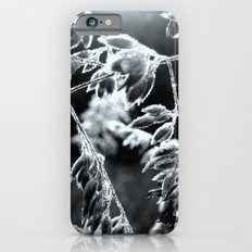 Drenched with Dew iPhone 6s Slim Case