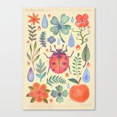 Et coloris natura II Canvas Print