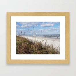 Screen of Sea Oats Framed Art Print