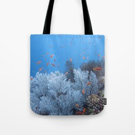 Snow coral school for anthea Tote Bag